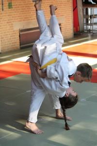 examen jiu jitsu 2015 089